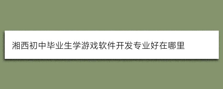 湘西初中毕业生学游戏软件开发专业好在哪里