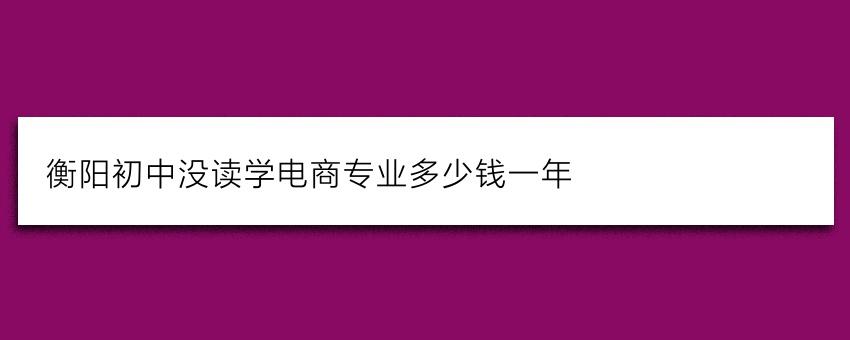 衡阳初中没读学电商专业多少钱一年
