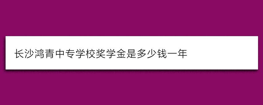 长沙鸿箐中专学校奖学金是多少钱一年