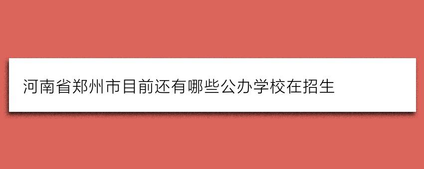 河南省郑州市目前还有哪些公办学校在招生