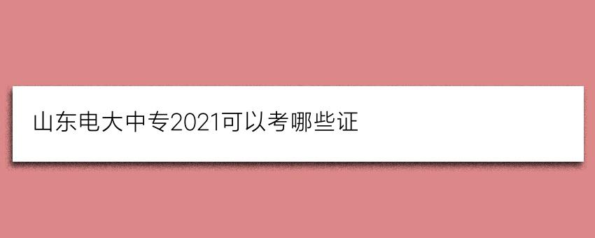 山东电大中专2021可以考哪些证