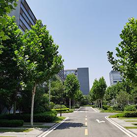 河南省郑州市外贸学校2021报名要求_报名电话