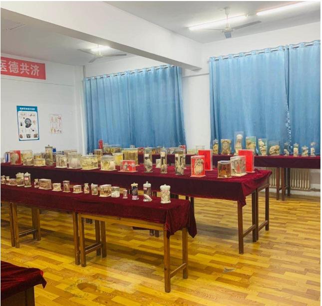 郑州公办医学中专郑州白求恩在校生多少人报名电话