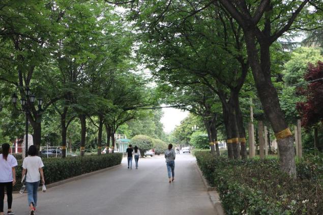 河南公立的中专_河南省商务中专学校能不能上