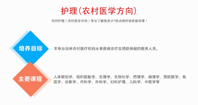中考分数低可以上哪些郑州市中专学校